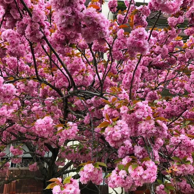 Good Morning April 3